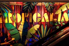 Tropicalia - U St DC