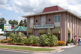 Sunflower Vegetarian Restaurant
